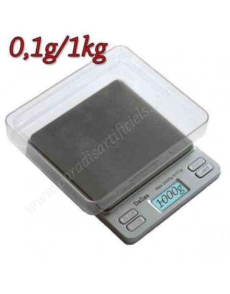 Balance Dallas 0.1g - 1kg